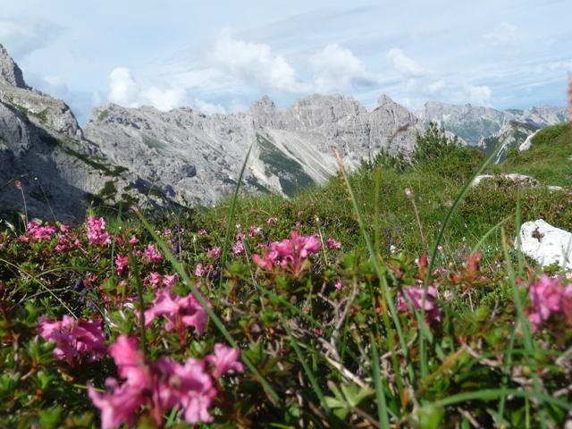 Monte Pramaggiore
