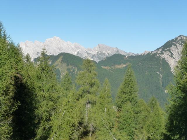 Dalla Forcella Dof si osserva il pascolo di Casera Bregolina Grande. In lontananza la Cima dei Preti.