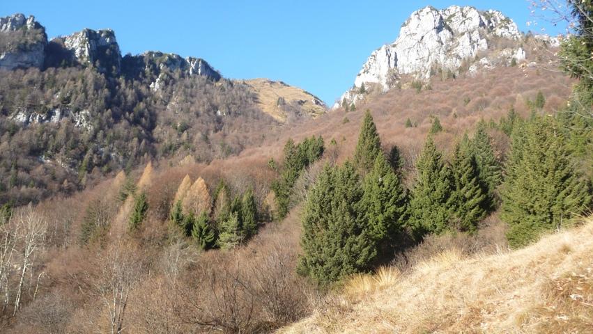 Forcella Val di Forscia.